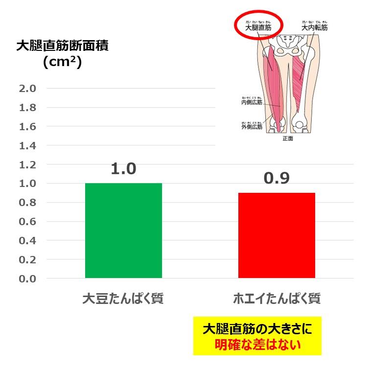 大腿直筋断面積